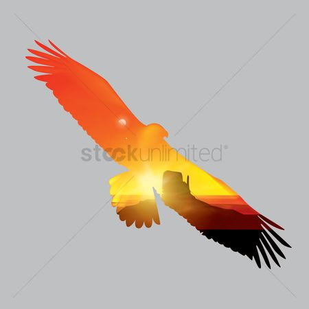 Hawks : Double exposure of eagle and sunset