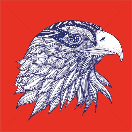 Hawks : Eagle head