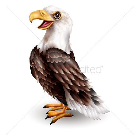 Claws : Eagle