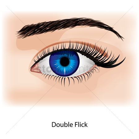 Cosmetic : Eye with double flick