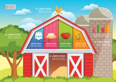 Chicken : Farm and agriculture infographic