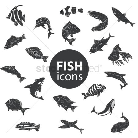 Dolphins : Fish icons