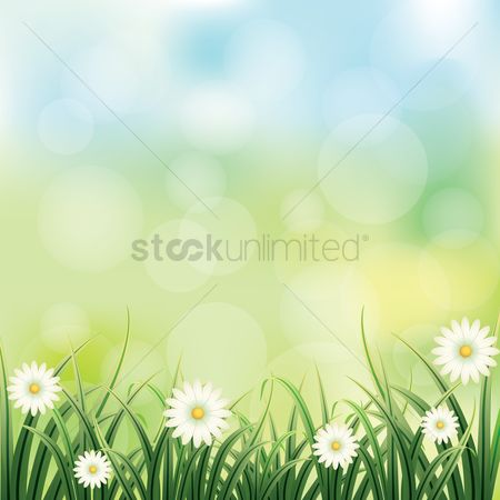 Flower : Floral background