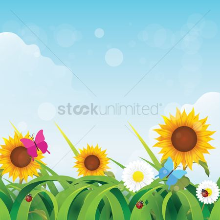 Spring : Floral background