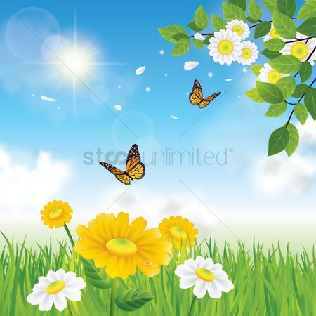 Grass : Flowers background