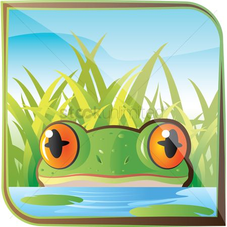 Zoos : Frog