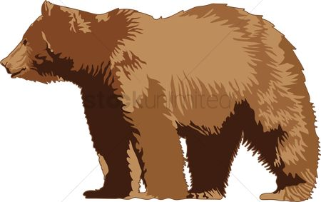 Huge : Grizzly bear