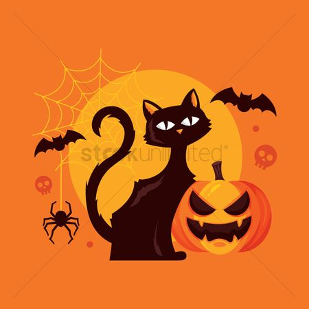 Traditions : Halloween cat and pumpkin
