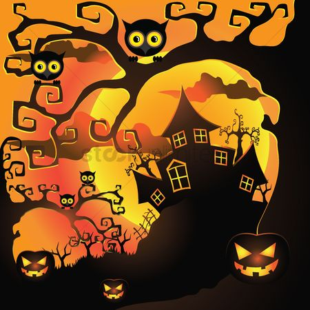 Owl : Halloween night