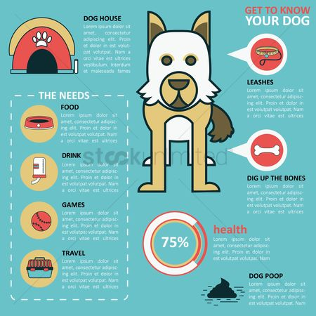 Health : Infographic of dog health