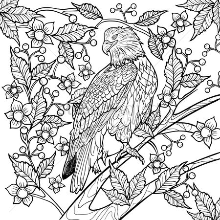 Hawks : Intricate eagle design