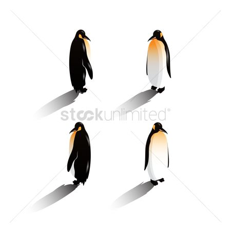 Backview : Isometric penguins