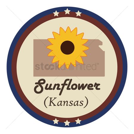 Kansas : Kansas state with sunflower