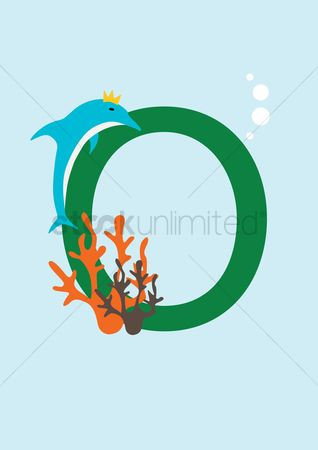 Dolphins : Letter o