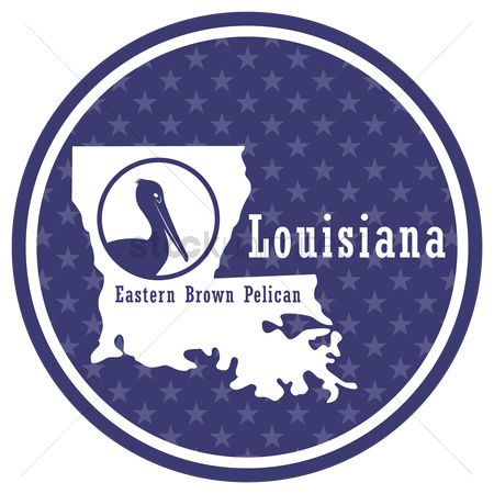 Louisiana : Louisiana state map with eastern brown pelican