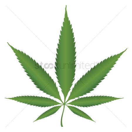 Medical : Marijuana leaf