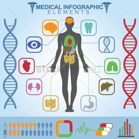 Dna : Medical infographic elements