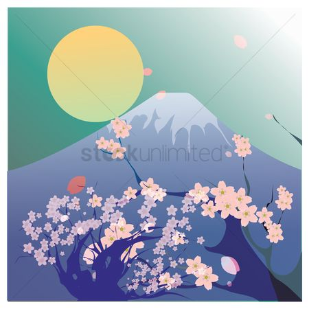 Tourist attraction : Mount fuji kyoto and cherry blossom