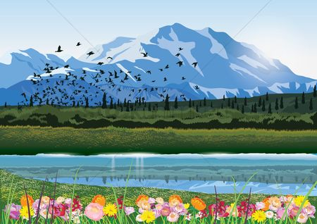 Mountain : Mountain lake with flowers