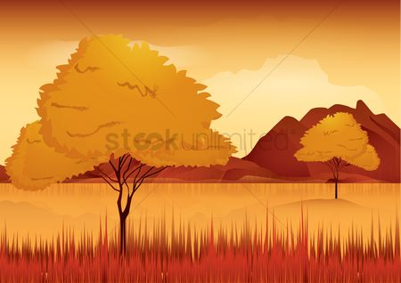 Hills : Nature background