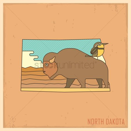 United states : North dakota state map