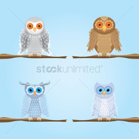 Stems : Owls perched on stem