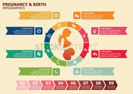 Flow : Pregnancy and birth infographic