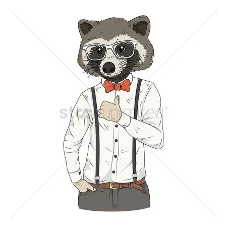 Accessories : Raccoon character