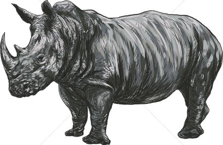 Huge : Rhinoceros