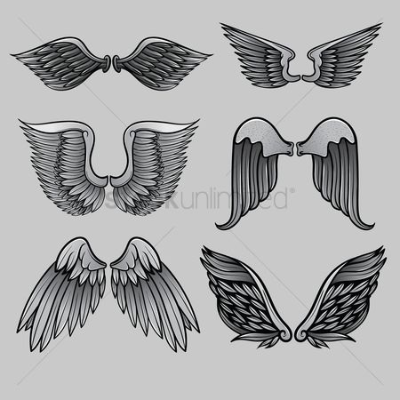 Feather : Set of angel wings