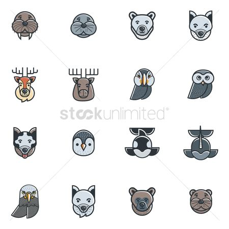 Penguins : Set of animal icons