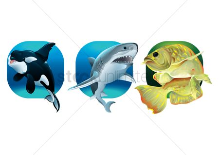 Marine life : Set of aquatic animals