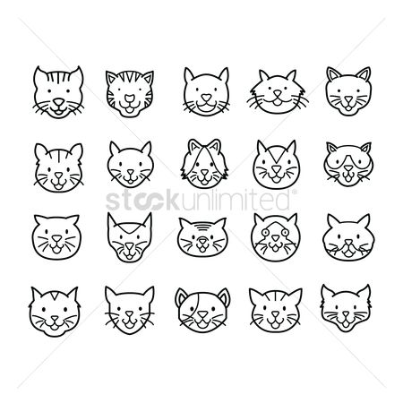 Animal : Set of cats