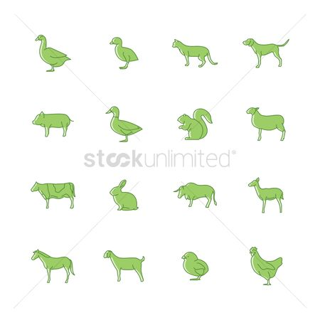 Bull : Set of farm animals