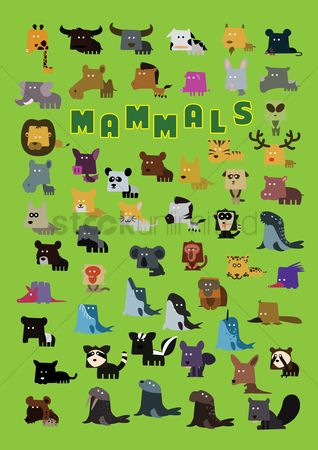 Cartoon : Set of mammals icons