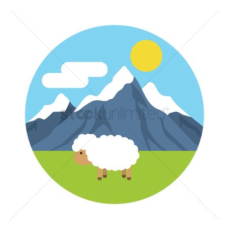 Vertebrate : Sheep at the countryside