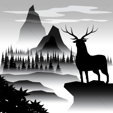 Vertebrate : Silhouette of an elk and the valley