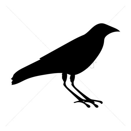 Cutout : Silhouette of crow