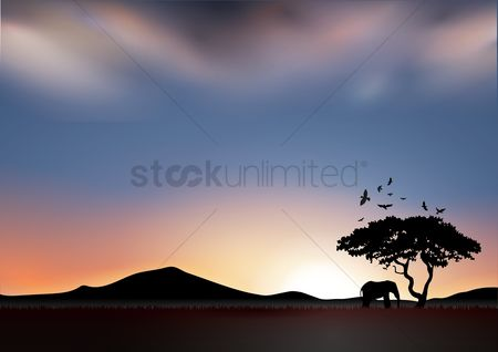 Mountains : Silhouette of elephant at sunset
