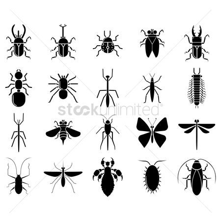 Cutout : Silhouette of insects
