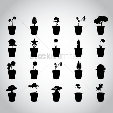 Flower pot : Silhouette of potted plants