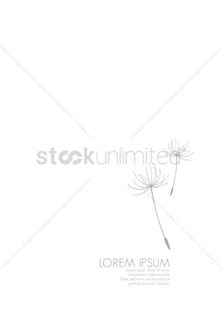 Clean : Simple background with dandelion florets