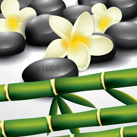 Zen : Spa pebbles with bamboo leaves