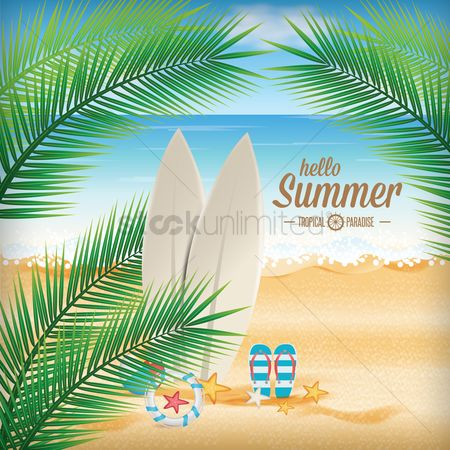 Summer : Summer background