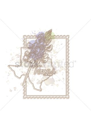 Texas : Texas map with flower