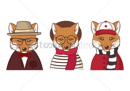 Man suit fashion : Three hipster foxes