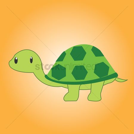 Background : Tortoise over a orange background