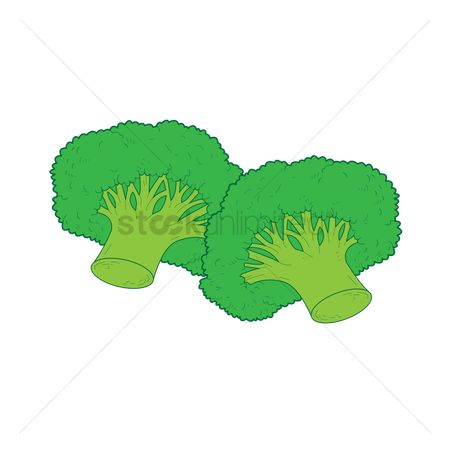 Greens : Two broccoli