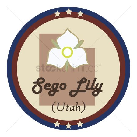 Utah map : Utah state with sego lily flower