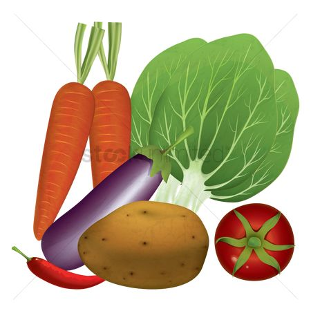 Carrots : Vegetables